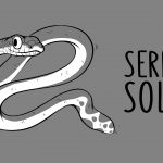 Les Carencés – Serpent solide